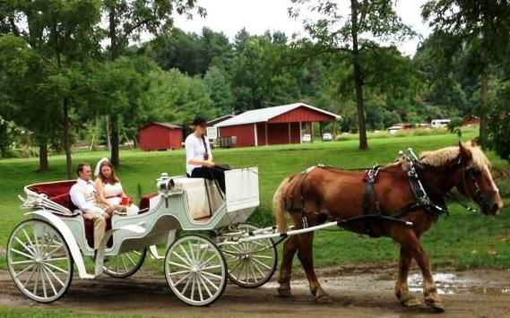 Wedding on a Farm