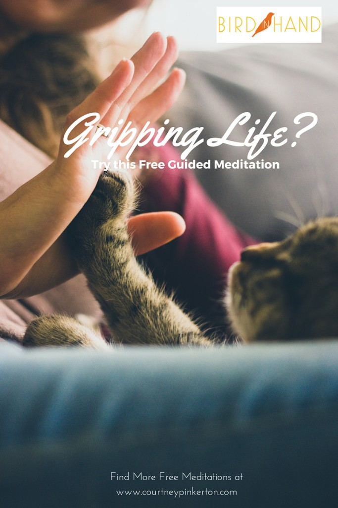 Gripping Life a Bit Too Hard? Try this Free Guided Meditation