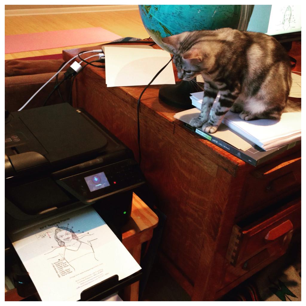 Beatrix Supervises My Process