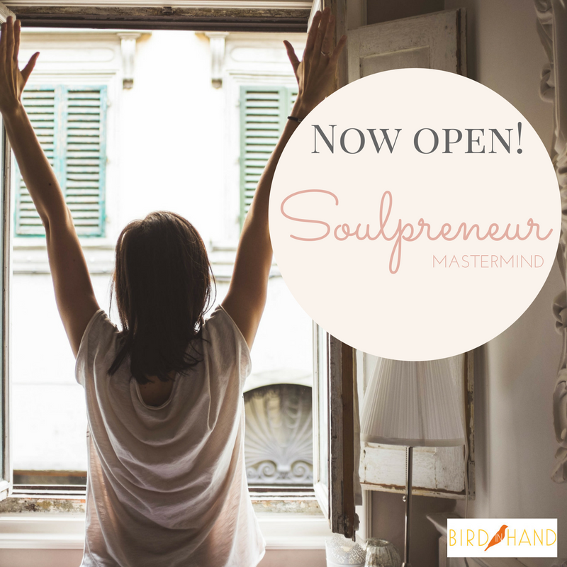 soulpreneur-now-open